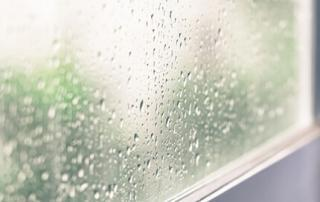 double glazed window with condensation Peterborough